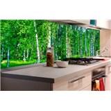 Samolepící tapety za kuchyňskou linku březový les rozměr 180 cm x 60 cm