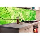 Samolepící tapety za kuchyňskou linku listové žíly rozměr 180 cm x 60 cm