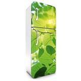 Samolepící tapety na lednici zelené listy rozměr 180 cm x 65 cm