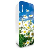 Samolepící tapety na lednici kopretiny rozměr 180 cm x 65 cm