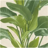 Vliesové tapety na zeď IMPOL Metropolitan Stories listy zelené