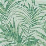 Vliesové tapety na zeď IMPOL NEU listy palmy zelené na světle zeleném podkladu