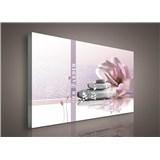 Obraz na plátně zen garden 75 x 100 cm
