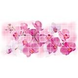 Obkladové 3D PVC panely rozměr 955 x 480 mm, tloušťka 0,2 mm, květy orchideje