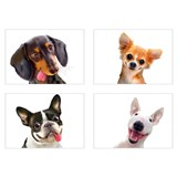 Samolepky na zeď selfie psi rozměr 45 x 65 cm