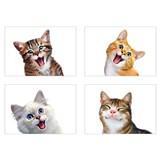 Samolepky na zeď selfie kočky rozměr 45 x 65 cm