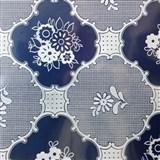 Ubrusy návin 30 m x 140 cm transparentní vzor lesklý