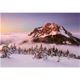 Vliesové fototapety zasněžený horský vrchol rozměr 368 cm x 254 cm