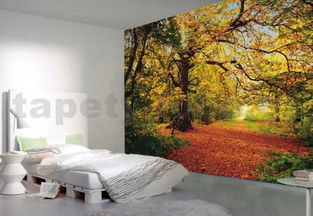 Fototapety autumn forest tapety - Papeles pintados originales ...