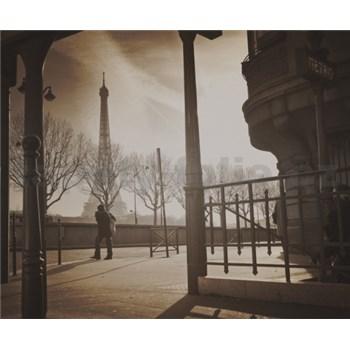 Luxusní vliesové fototapety Paříž - sépie, rozměr 325,5 cm x 270 cm