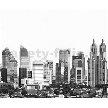 Luxusní vliesové fototapety Jakarta - černobílé, rozměr 325,5 cm x 270 cm
