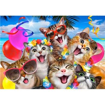 Vliesové fototapety selfie kočky rozměr 368 cm x 254 cm