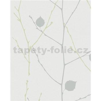 Vliesové tapety na zeď Summer Time větve s listy zeleno-šedé