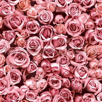 Vliesové tapety na zeď IMPOL Escapade růže růžové
