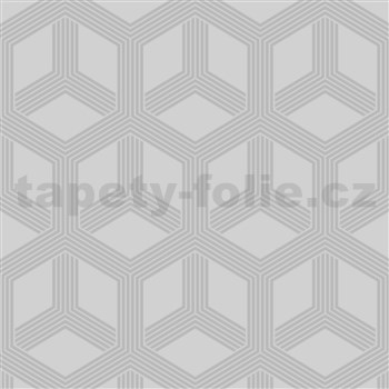 Vliesové tapety na zeď IMPOL Galactik hexagon stříbrný na šedém podkladu