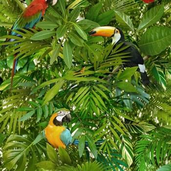 Vinylové tapety na zeď Faux Semblant papoušci