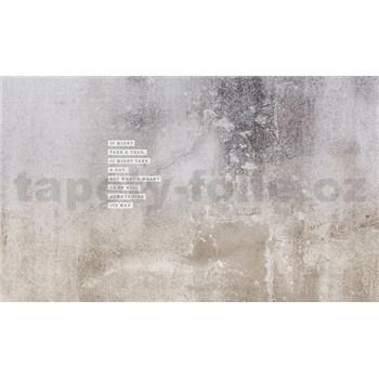 Luxusní vliesové fototapety omítková zeď, rozměr 450 cm x 270 cm