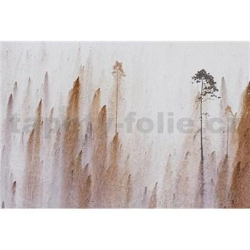 Luxusní vliesové fototapety stromy BEZ TEXTU, rozměr 400 cm x 270 cm