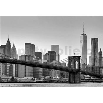 Fototapety New York rozměr 366 x 254 cm - POSLEDNÍ KUSY
