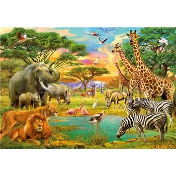 Fototapety Afrika a zvířata African Animals rozměr 366 cm x 254 cm