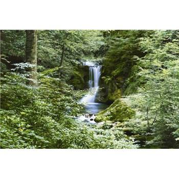 Fototapety Waterfall in Spring rozměr 366 cm x 254 cm