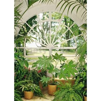 Fototapety Wintergarden rozměr 183 cm x 254 cm