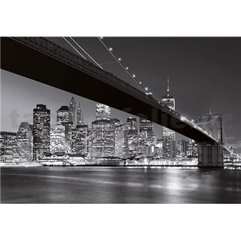 Fototapety Brooklyn Bridge NY rozměr 366 cm x 254 cm