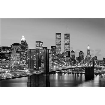 Fototapety Manhattan Skyline at Night rozměr 175 cm x 115 cm