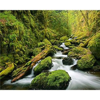 Vliesové fototapety Green Canyon Cascades rozměr 200 cm x 160 cm
