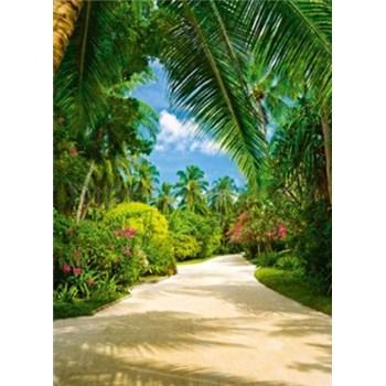 Fototapety Tropical Pathway rozměr 183 cm x 254 cm