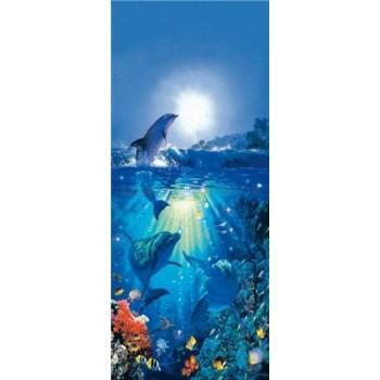 Fototapety Dolphin in the Sun rozměr 86 cm cm x 200 cm