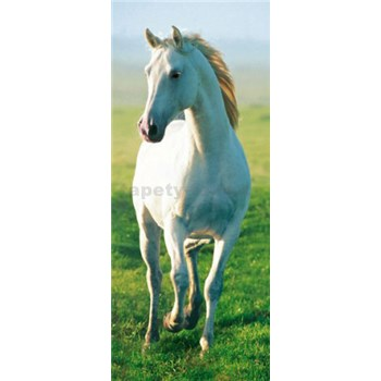 Fototapety White Horse rozměr 86 cm cm x 200 cm