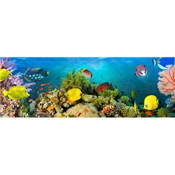 Vliesové fototapety mořský svět Sea Corals rozměr 366 cm x 127 cm