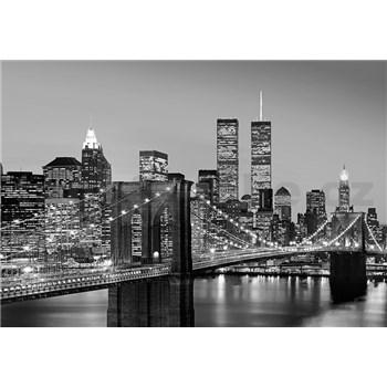 Vliesové fototapety Manhattan Skyline At Night rozměr 366 cm x 254 cm