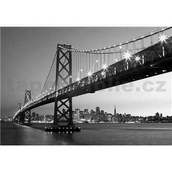 Vliesové fototapety San Francisco Skyline rozměr 366 cm x 254 cm
