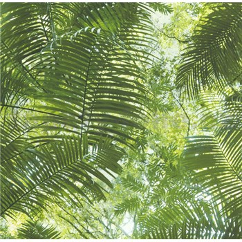 Vliesové tapety na zeď Collage palmové listy - POSLEDNÍ KUSY