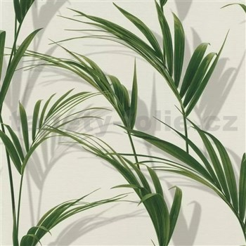 Vliesové tapety na zeď IMPOL Collection listy palmy na bílém podkladu