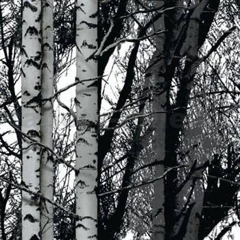 Samolepící tapety - Wood 45 cm x 15 m