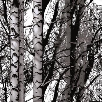 Samolepící fólie Wood - 45 cm x 1,5 m (cena za kus)