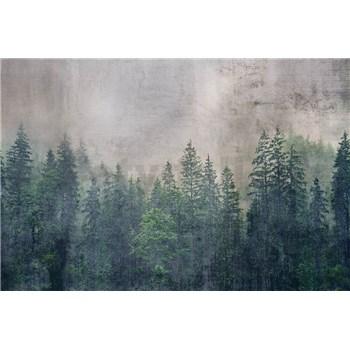 Vliesové fototapety koruny stromů rozměr 375 cm x 250 cm