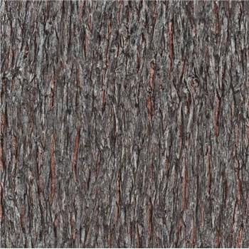 Vliesové tapety na zeď IMPOL Paradisio 2 kůra stromu černo-hnědá