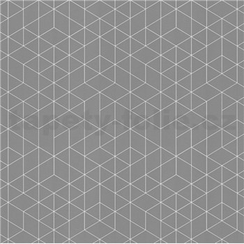 Vliesové tapety na zeď Scandinja skandinávský design šedý