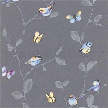 Vliesové tapety na zeď Natural Living ptáci a motýli barevní na šedých větvích s lístky