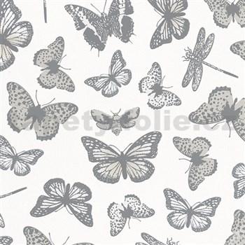 Vliesové tapety na zeď Felicita motýli šedo-stříbrní na bílém podkladu