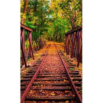 Vliesové fototapety železnice rozměr 150 cm x 250 cm