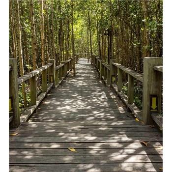 Vliesové fototapety mangrovový les rozměr 225 cm x 250 cm