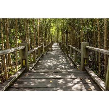 Vliesové fototapety mangrovový les rozměr 375 cm x 250 cm