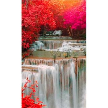 Vliesové fototapety deštný les rozměr 150 cm x 250 cm