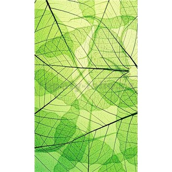 Vliesové fototapety listové žíly rozměr 150 cm x 250 cm
