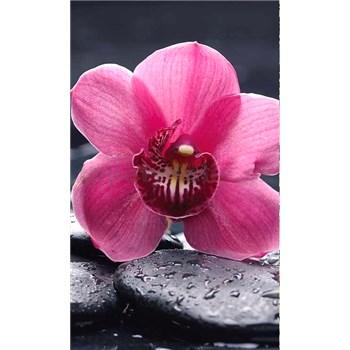 Vliesové fototapety orchidej s kameny rozměr 150 cm x 250 cm